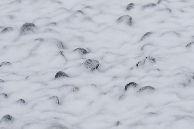 Snow Stones 003