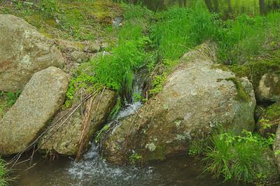 Stream leading to pond