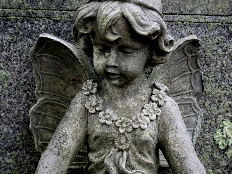 weeping angel (don't even consider blinking)