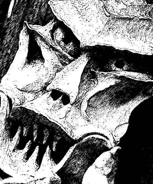 IMG_1021 lev sharp con crop poster graphic pen