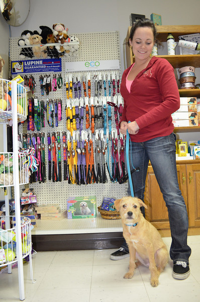 See our new Lupine Eco leashes and collars for all sizes of dogs! Cat collars, too!<br /> <br /> Unique 2-tone weave is soft yet strong and made from recycled plastic bottles. 9 designer colors, in both warm and cool palettes inspired by the natural world.