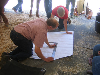 transferring the horses back map to paper