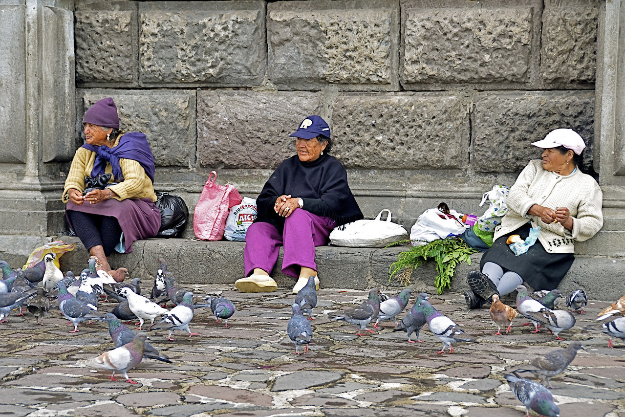 Old Women and Pigeons, Plaza de San Francisco, Quito