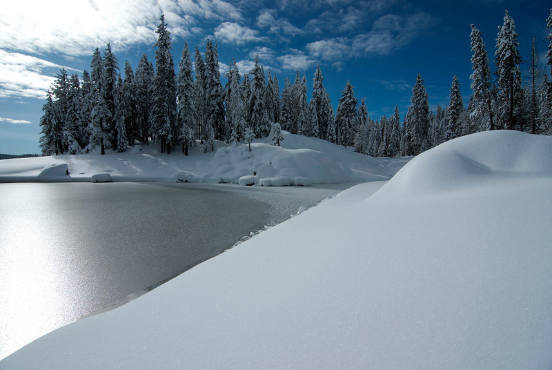 Cold, Icy, and Untouched--Shaver Lake 2/2010
