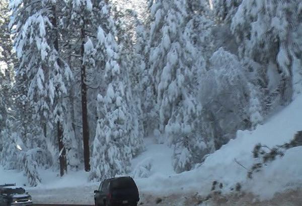 Lookout for the Broken Tree over the road awaiting it's unfortunate victim.  Video by Ben Zastonvik.