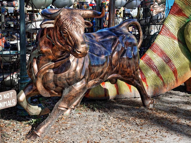 Barberville Roadside Bull