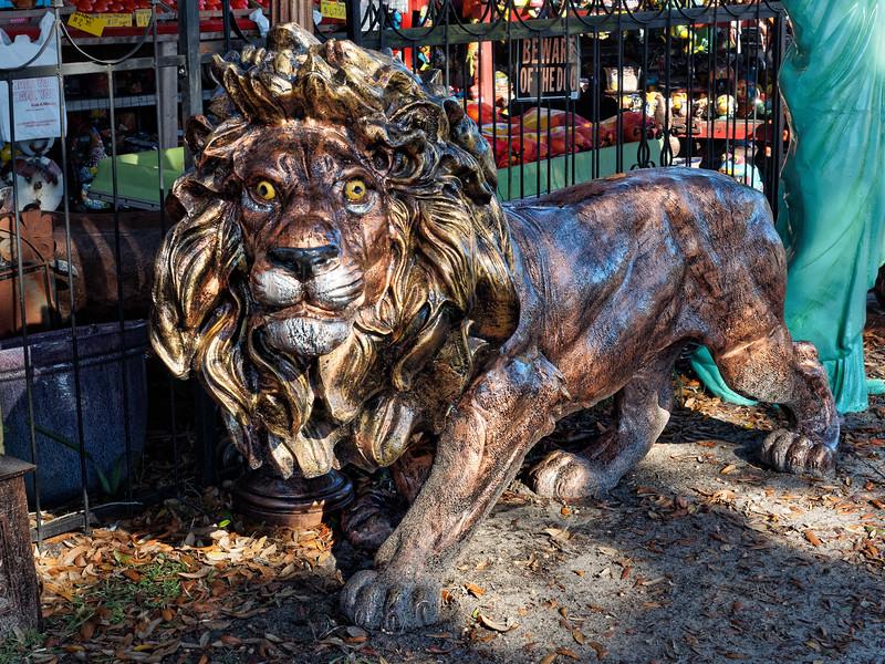 Barberville Roadside Lion