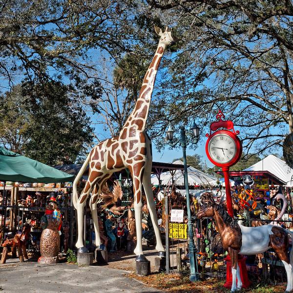 Barberville Roadside Giraffe