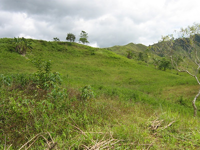 Land (7 acres) has been bought (2011) for this new deaf school in Mindanao.  This is a potential building site on the new property.