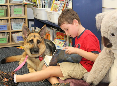 Oct 5 2011 -- ODESSA Therapy dog at work in a public school reading program.