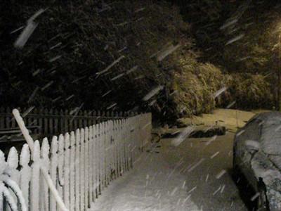 Dec. Snow