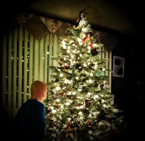 Ron and Vickie Fowler's grandson, Thomas McCoy, age 7, admires the family Christmas tree.<br /> <br /> Photographer's Name: Ron Fowler<br /> Photographer's City and State: Anderson, IN