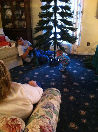 Benjamin (18) and cousin Abby (1) help put up their grandparents' Christmas tree.<br /> <br /> Photographer's Name: Mindy Winningham<br /> Photographer's City and State: Anderson , Ind.
