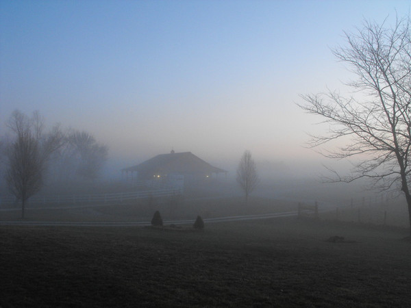 """Rudolph Fog"" This week has had lots of Indiana fog, We tell the kids it's Rudolph fog, Photo taken at the ""Moon Rise Farm"" Richland Twd.<br /> <br /> Photographer's Name: J.R. Rosencrans<br /> Photographer's City and State: Alexandria, IN"