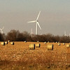 A wind farm behind rolled corn stalks east of Elwood<br /> <br /> Photographer's Name: Ron Carmer<br /> Photographer's City and State: Elwood, Ind.