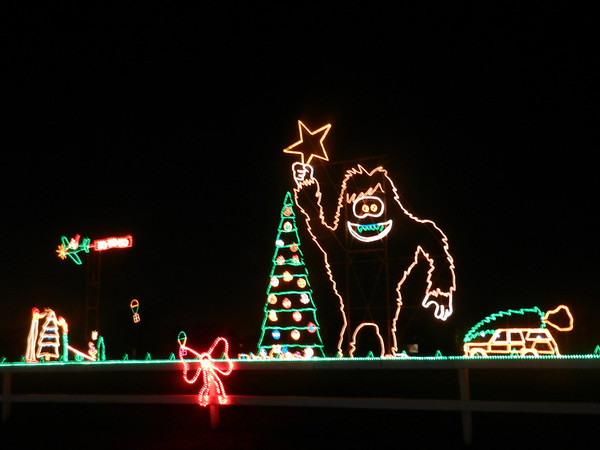 The light show at Reynolds Farm Equipment in Noblesville.  Very nice and worth the drive!<br /> <br /> Photographer's Name: Diana Adams<br /> Photographer's City and State: Frankton, Ind.
