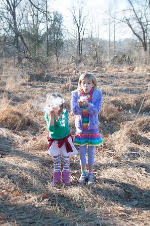 blowing milkweed - as fun as blowing bubbles.