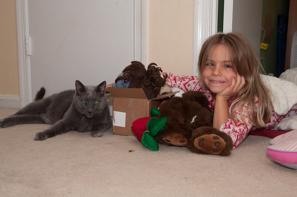 I took this picture in the dark with a flash.  This is Charlotte, NOT going to sleep when she was supposed to, with Princess Cat in a box and Willy harassing her.