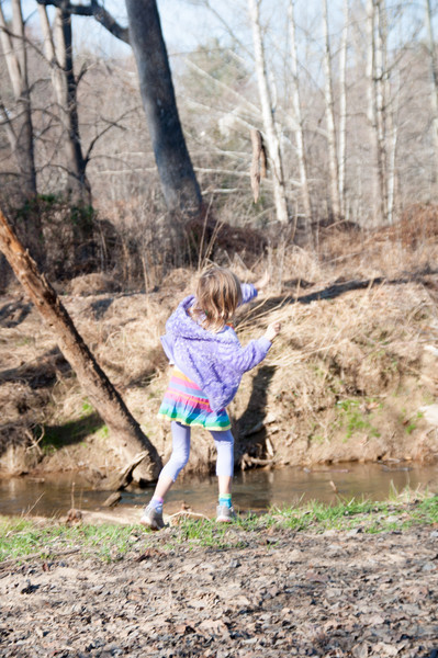 Throwing sticks into the stream for Ginny