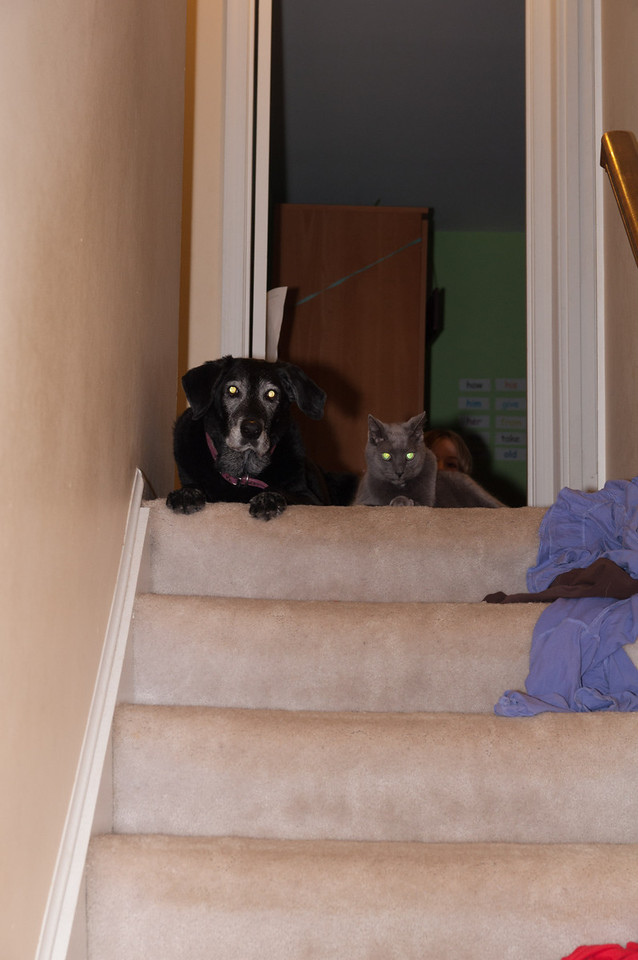 Maggie and Willy together at the top of the stairs.