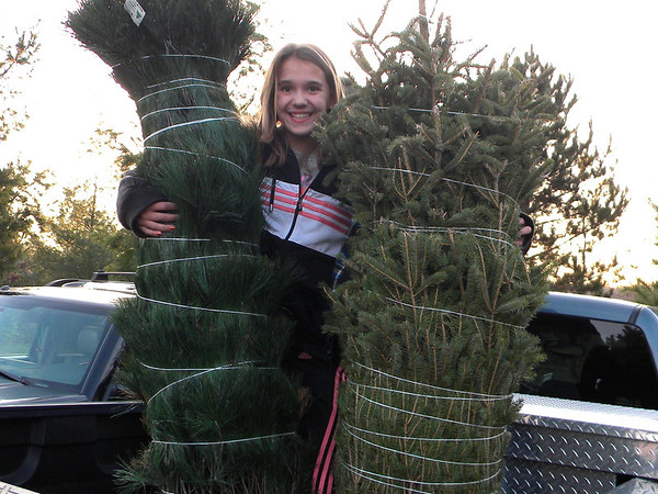 Our grandaughter at an area tree farm. She found just the right tree.<br /> <br /> Photographer's Name: Rita Drews<br /> Photographer's City and State: Anderson, Ind.