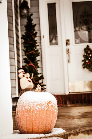 The frosty pumpkin.<br /> <br /> Photographer's Name: Terry Lynn Ayers<br /> Photographer's City and State: Anderson, Ind.