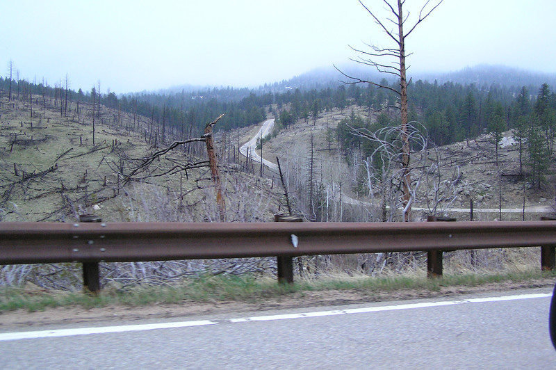 Road through Walker Ranch Park above Boulder