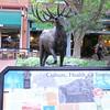 Downtown Boulder Pedestrian Mall