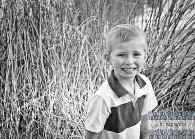 In the Tall Tall Grass bw-5741