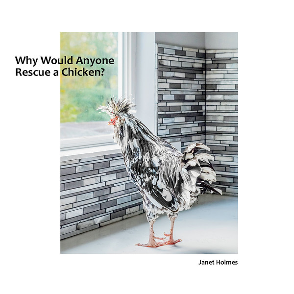Why Would Anyone Rescue a Chicken_ Cover (Resized)-Jan12