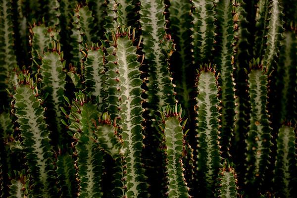 Peru_149