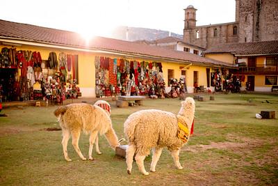 Peru_15