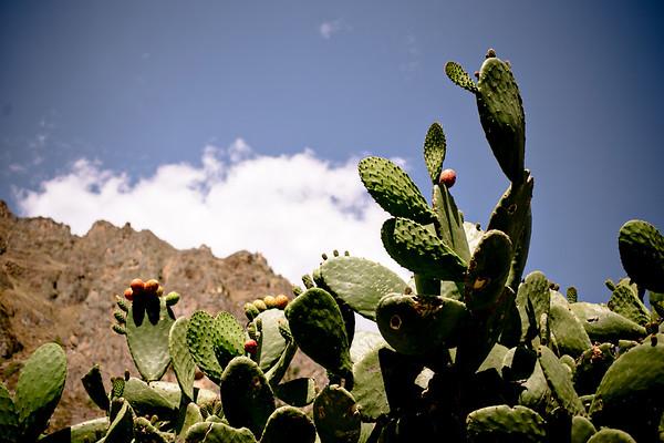 Peru_136