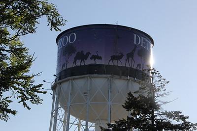 Detroit Zoo Run Wild