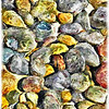 Rocks, Mission Valley Ca