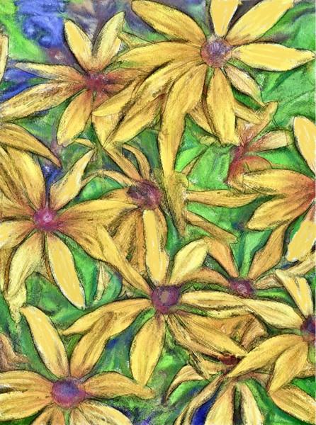Flowers, Temecula Ca