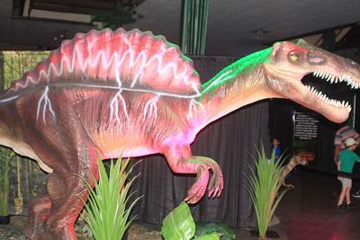 Dinoaurs- Exhibits