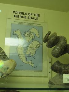 http://www.britannica.com/EBchecked/topic/459904/Pierre-Shale