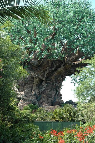 Disney June 2006 (180)