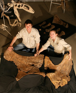 Australian Age of Dinosaurs Staff George Sinapius and Kate Durack with the fossilised left pelvic elements of Matilda [Diamantinasaurus matildae], a giant sauropod that roamed inland Queensland 100 million years ago.