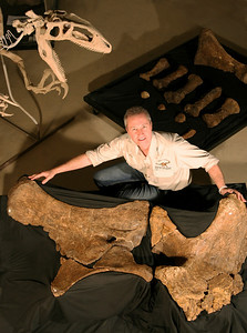 Australian Age of Dinosaurs Chief of Operations Dr Brant Bassam with the fossilised left pelvic elements of Matilda [Diamantinasaurus matildae].