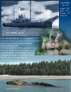Wreck of the ALASKA REEFER. Indian Island,  Port Townsend Bay. July 20, 2008