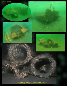 Artificial reef  - Holmes Harbor. February 8, 2009