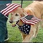 doggy 4th