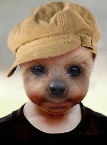 dogfaceboy