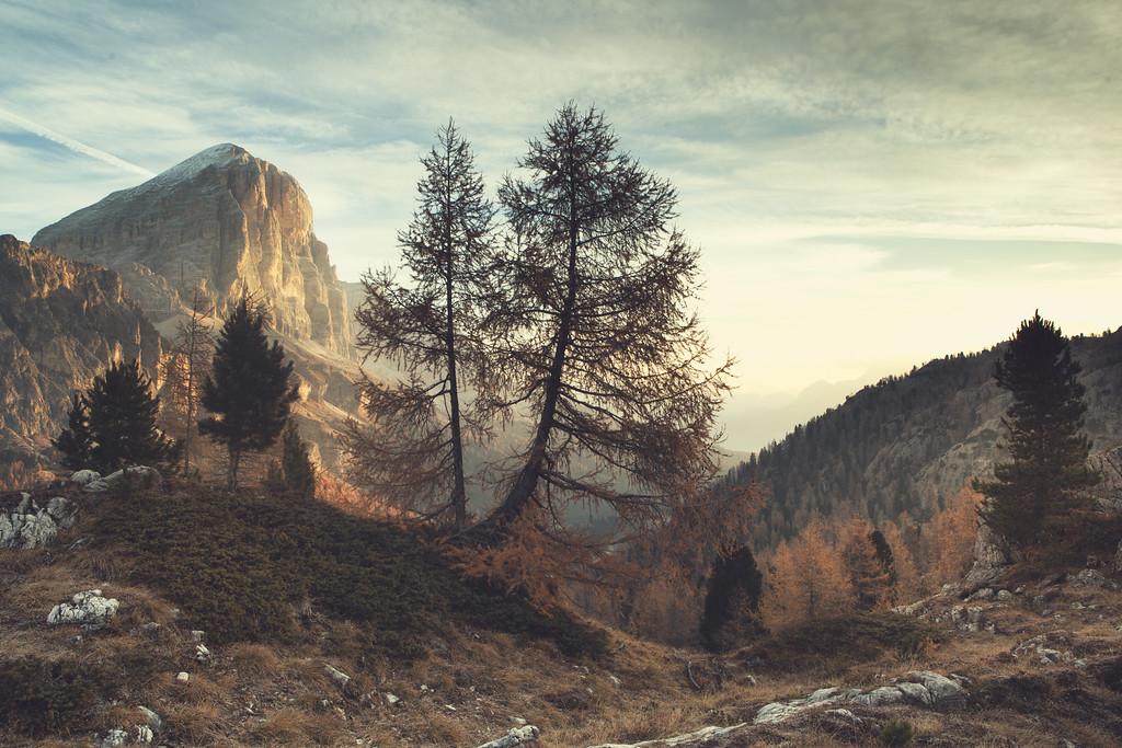 Limides Landscape