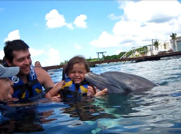 dolphin-3-M.jpg