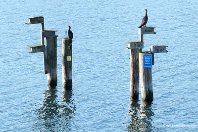 Miner's Bay Mayne Island BC.