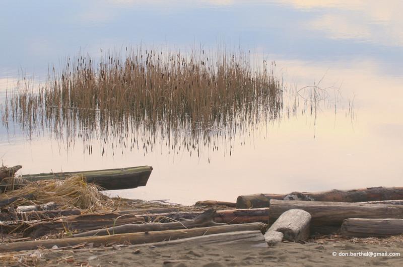 Flotsam at Wreck Beach Vancouver BC.
