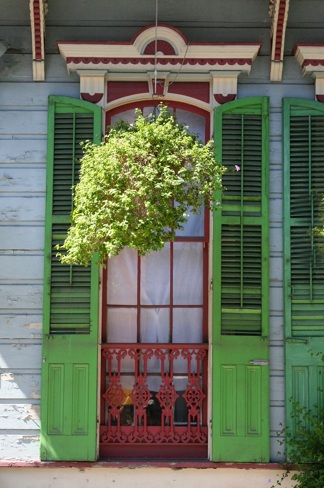 Green Shutters and Hanging Basket